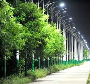 4公里村道700盏路灯,村庄亮化不可任性