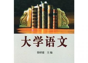 鹏唳天:大学语文逆势突围 需先放下功利心态